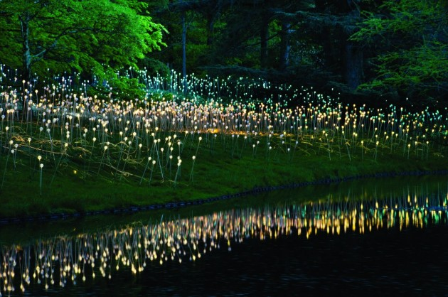 Stunning Light Art by Bruce Munro