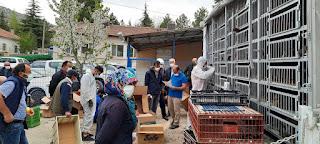 Bozkır Ziraat Odası Sertifikalı Patates ve Aşılı Kümes Hayvanı dağıttı.