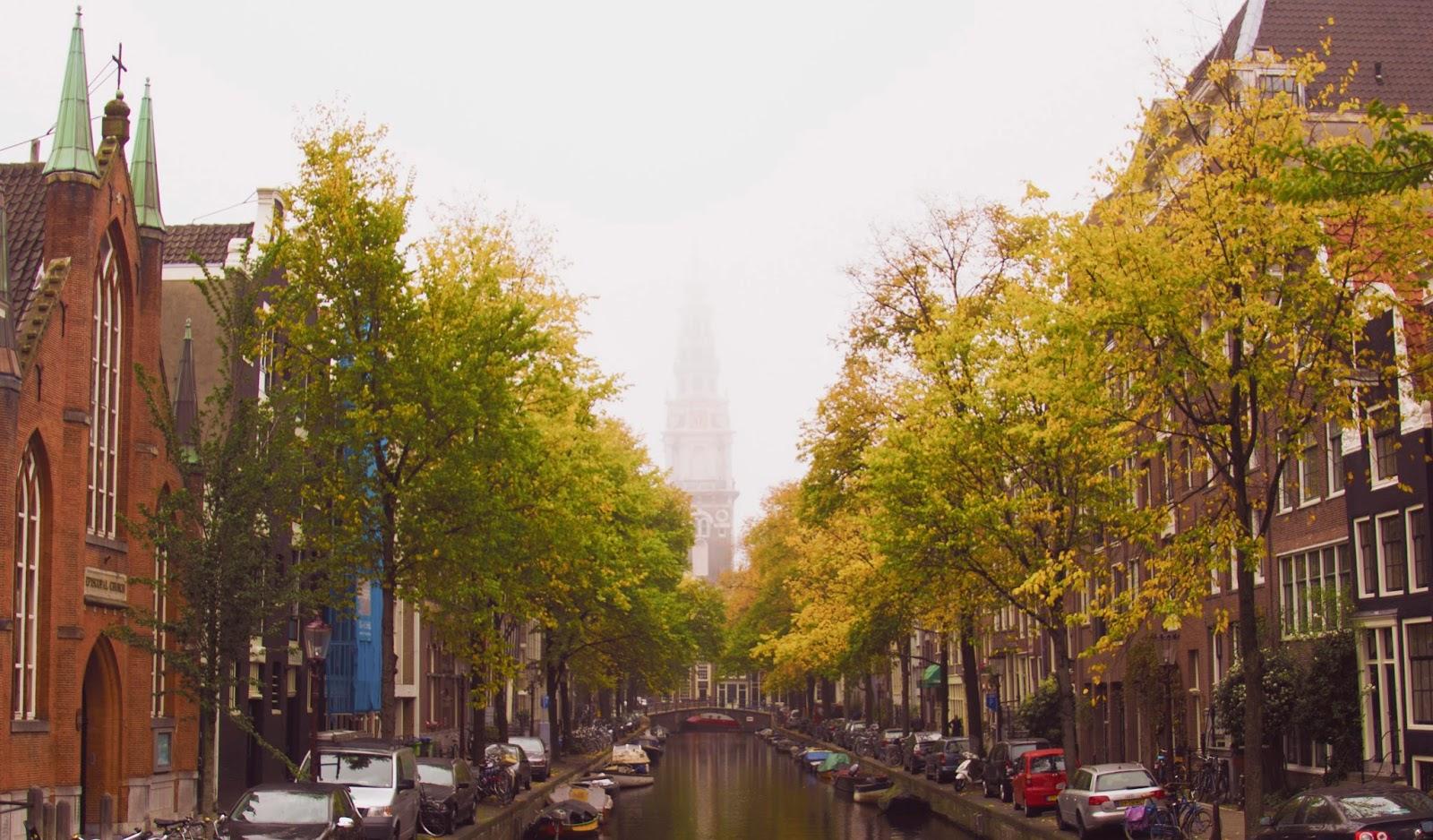 Nieuws van Flora van Nederland: wilde planten en hun omgeving online