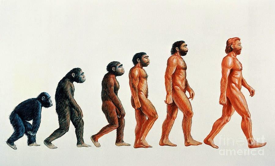 human-evolution-david-gifford.jpg
