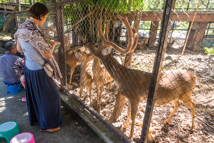 Chiang Mai Zoo. Part one.
