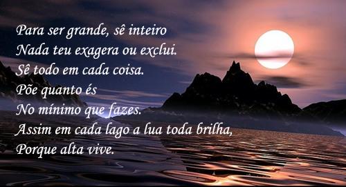 Poemas de Amizade de Fernando Pessoa Poema de Fernando Pessoa