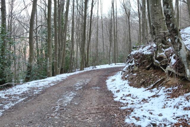 Parque Natural de el Montseny nevado