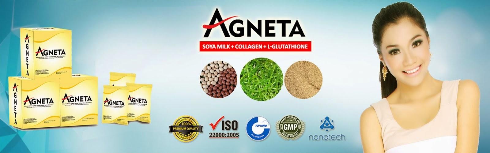 Distributor Agneta