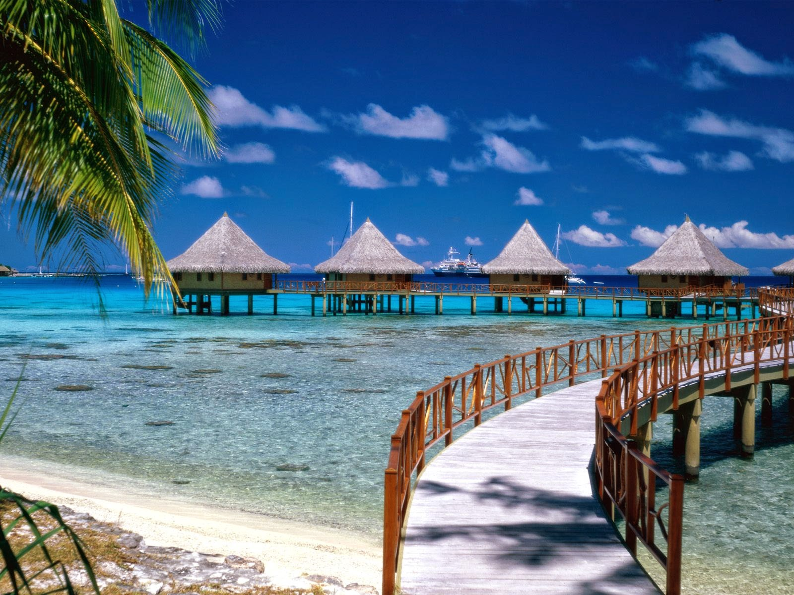 Walkway to Paradise French Polynesia Your Wallpaper - walkway to paradise french polynesia wallpapers
