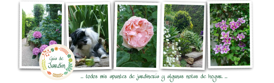 Guia de jardin. Blog de jardinería.