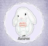 Petite Macaron