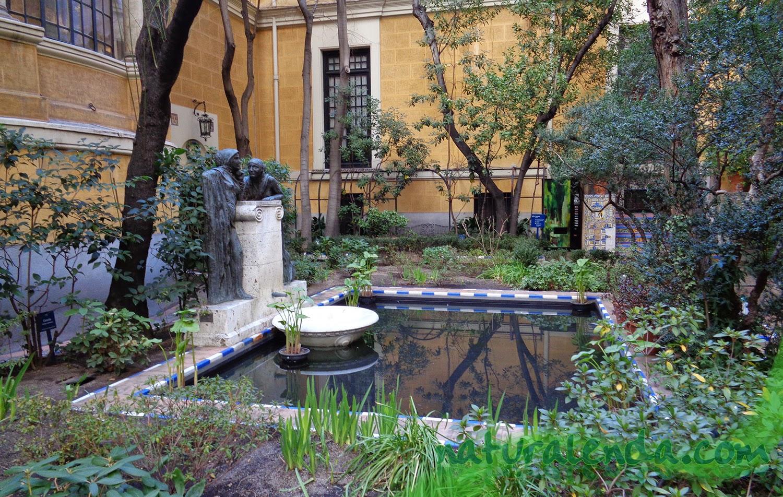 el estanque del museo sorolla