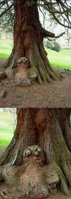 Секс на деревьях фото фото 677-836