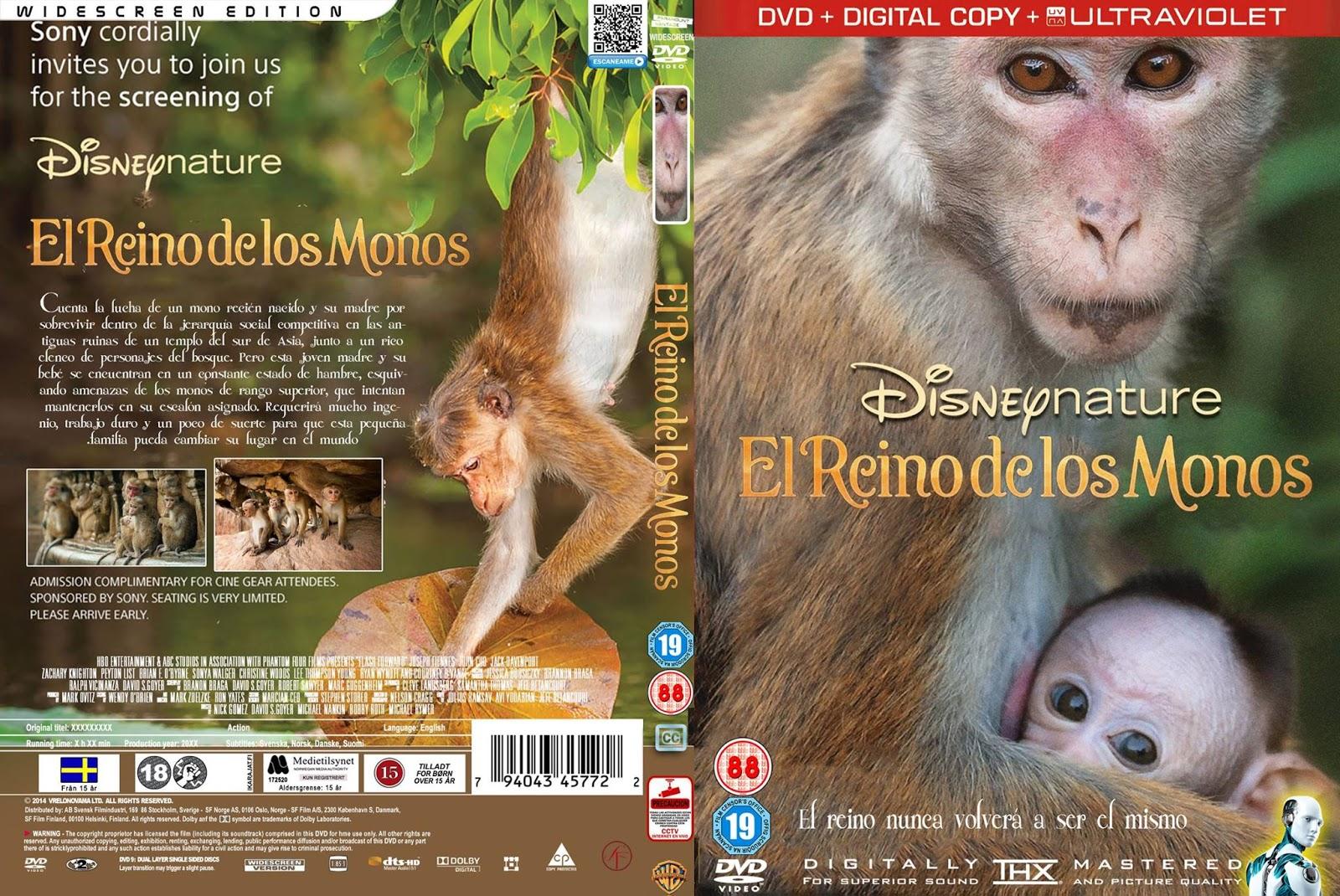Download O Reino dos Primatas BDRip XviD Dual Áudio Monkey 2BKingdom 2B  2BEl 2BReino 2BDe 2Blos 2BMonos 2B CoveRdvdGratiS
