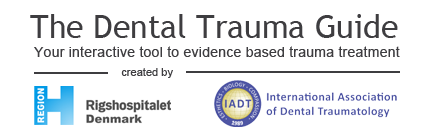 Dental Trauma Guide