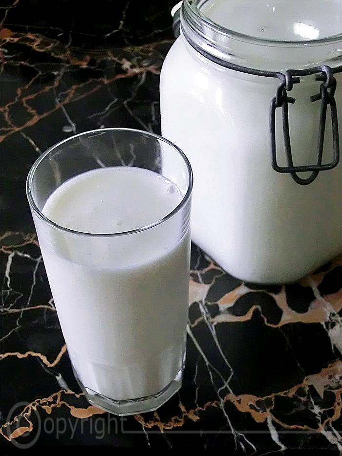 come si può preparare il kefir in casa