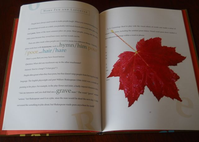 ideas for books to write