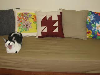 Gato Borges atrapalhando a foto da almofada nova