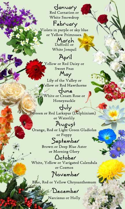 die frau birthmonth birthstone flower and color