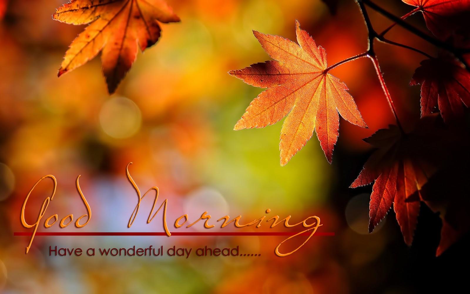 Good Morning Wonderful day HD Wallpaper