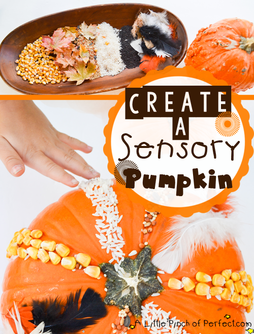 Create a Sensory Pumpkin from A Little Pinch of Perfection