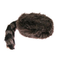 coonskin cap