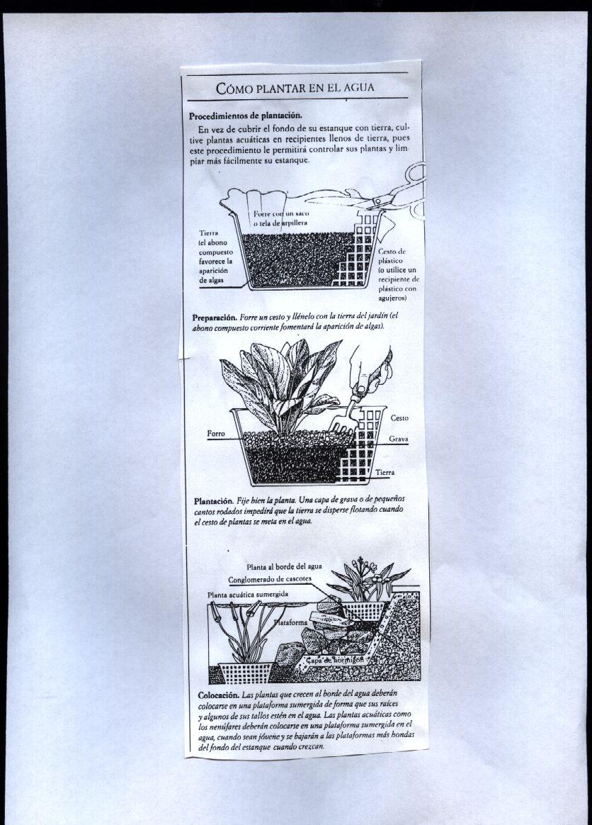 Formaci n en jardiner a el jard n acuatico for Formacion jardineria
