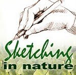 Please visit our Sketching in Nature blog!