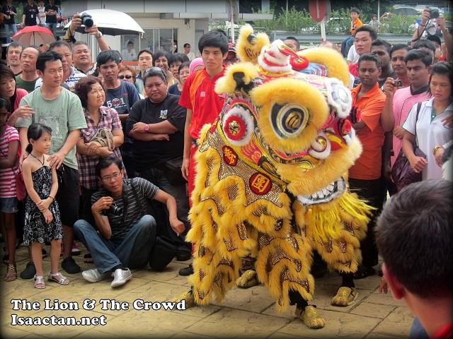 Lion Dance Championship