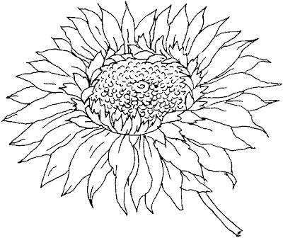 flower coloring sheet
