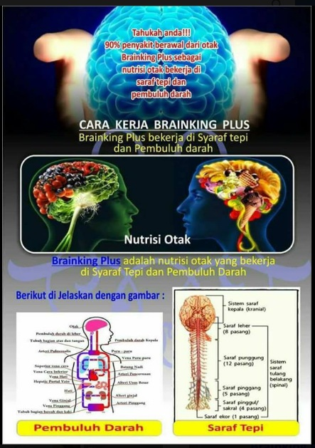 Testimoni & Distributor Brainking (Wa.085655112651)