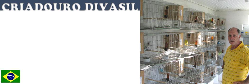 CRIADOURO DIVASIL