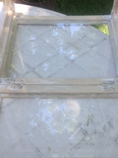 glass in DIY tabletop picture frame greenhouse