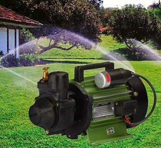 V-Guard Regenerative Self Prime Pump VSPA-H100 (0.5HP) Online, India - Pumpkart.com