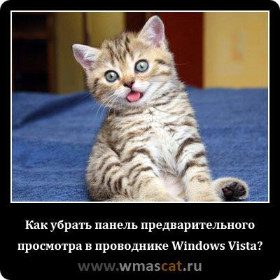 Как убрать панель предварительного просмотра в проводнике Windows Vista?