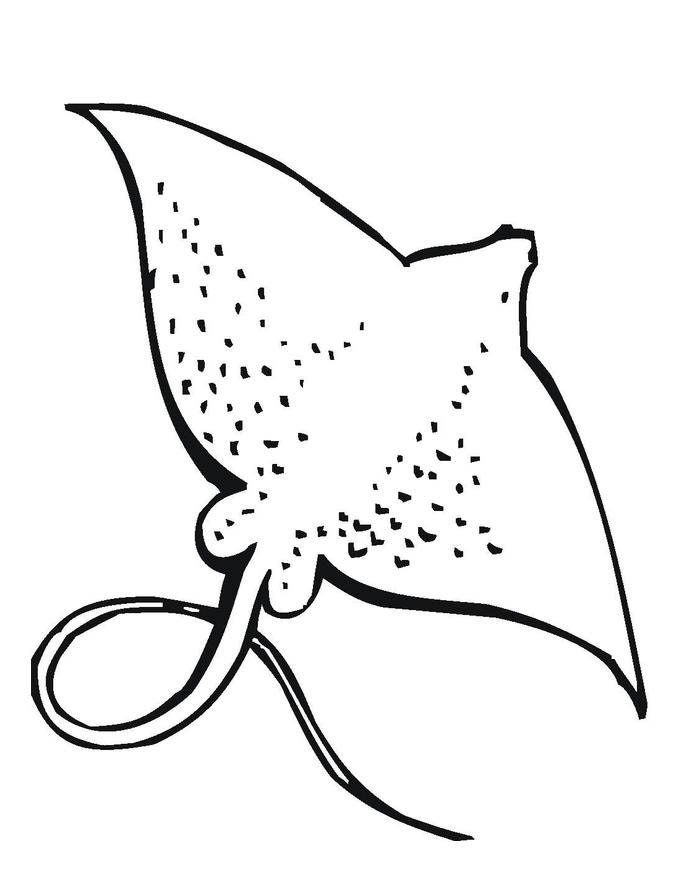 sea animal stingray coloring pages for kids