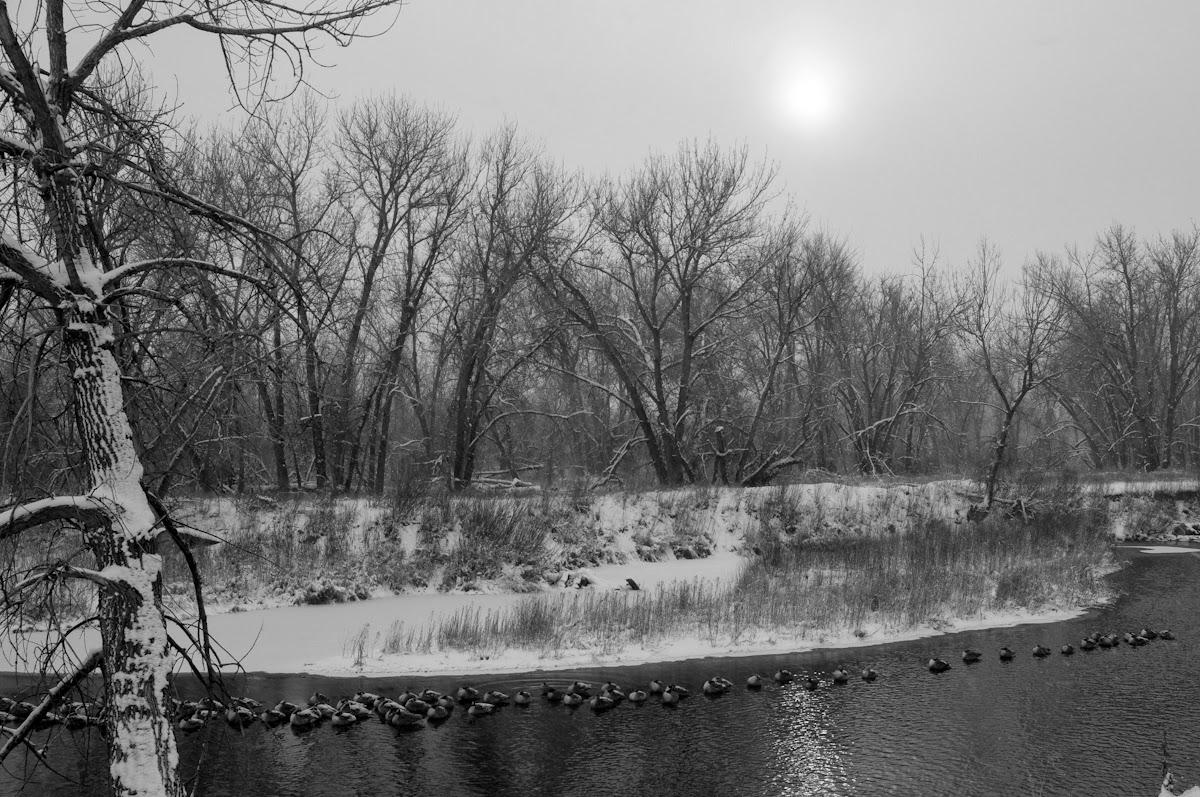South Platte Park