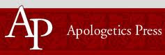 Apologetic Press