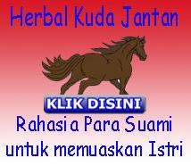 Herbal Kuda Jantan