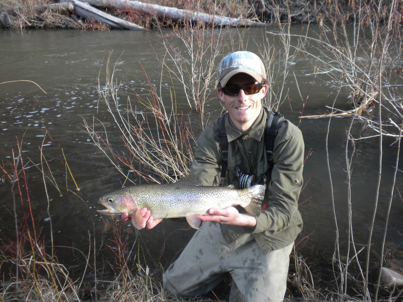 Arizona fly fishing clear creek for Clear creek fishing