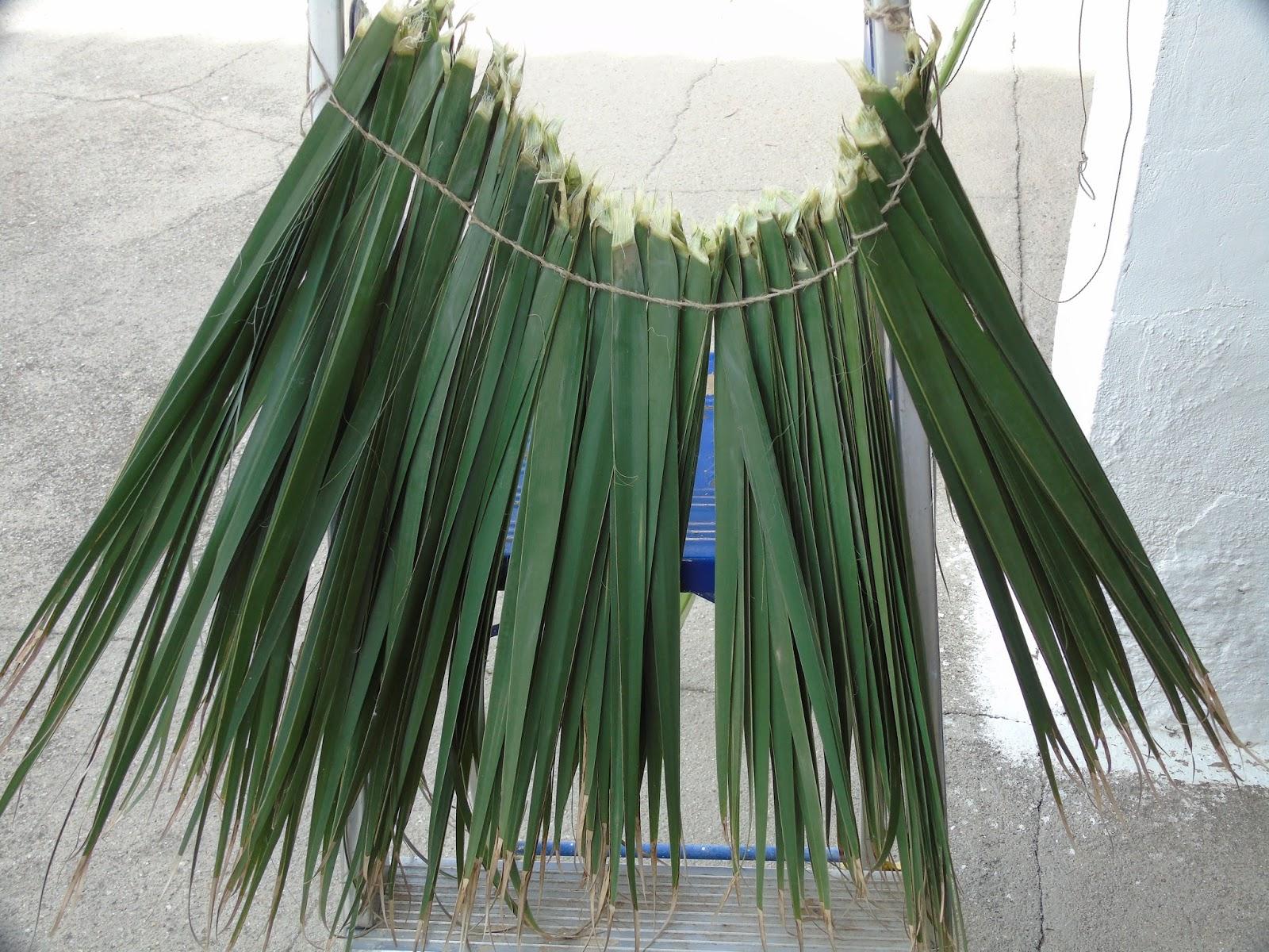 Recordando viejos oficios fabricaci n de escobas de palma - Escobas de palma ...