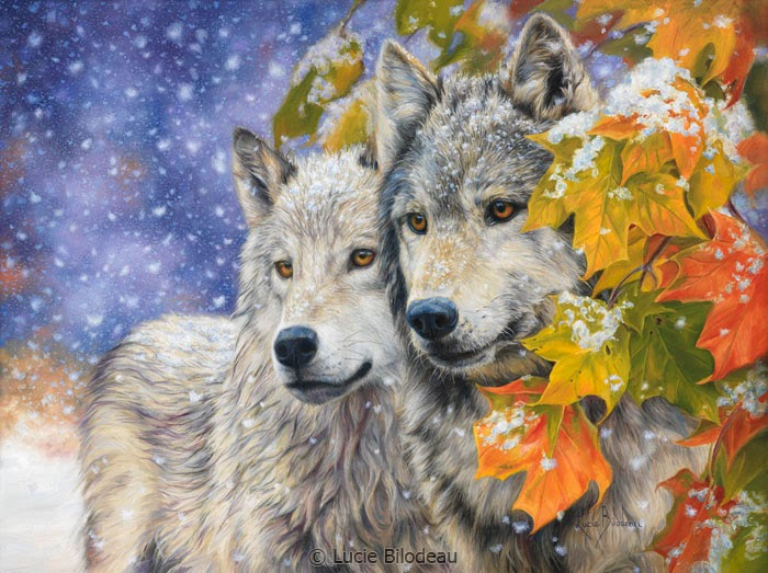 White Wolf North American Wildlife Paintings By Lucie