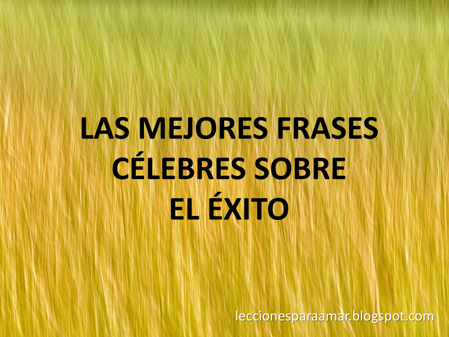 frases exito: