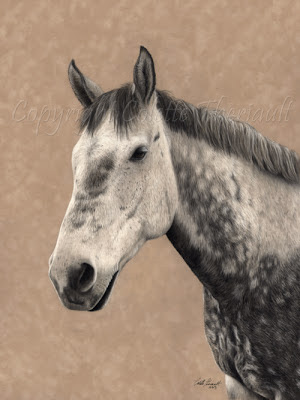 Grey Percheron Portrait Painting in Pastel by Colette Theriault