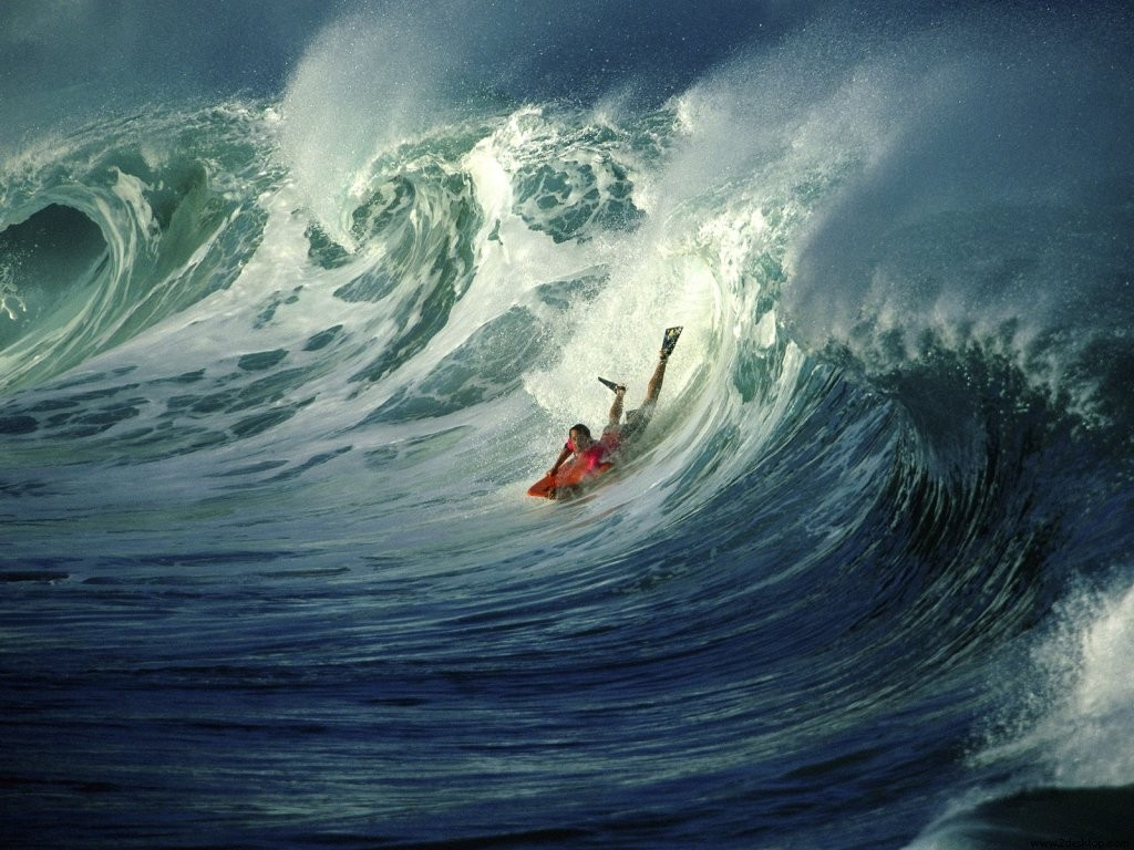 Surfing in a big wave