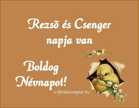 November 7 - Rezső, Csenger névnap