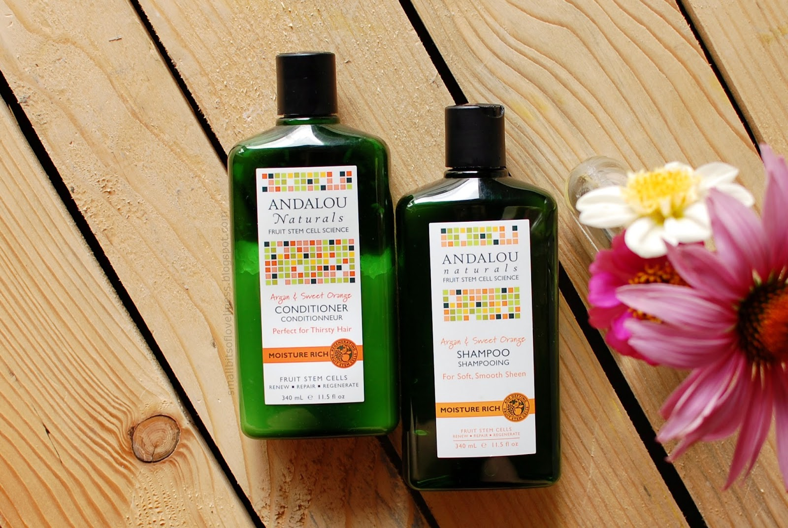 Andalou Naturals Shampoo and Conditioner Moisture Rich