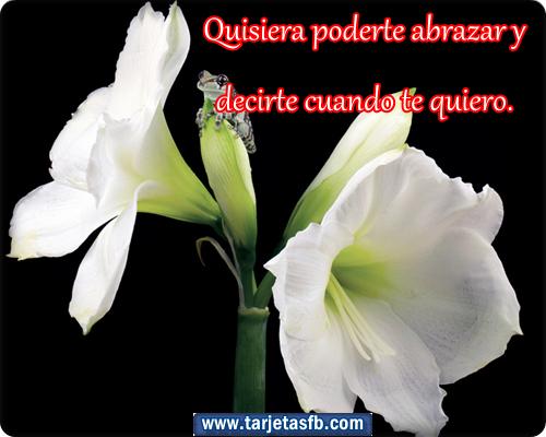 Frases Románticas de Amor - TARJETAS DE FELIZ JUEVES CON
