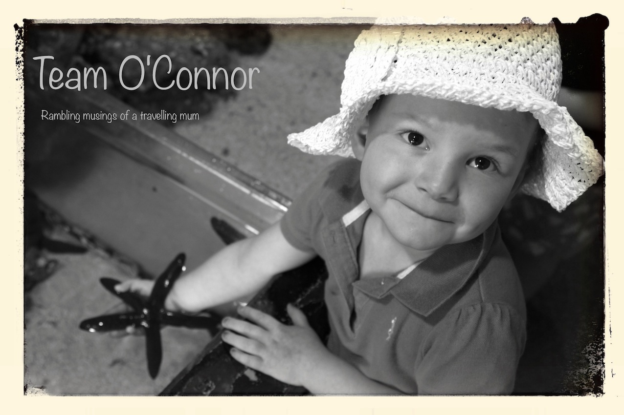 Team O'Connor