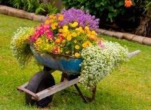 Výnimoční ľudia prehliadnu rozbitú bránku a budú obdivovať kvety v tvojej záhrade.