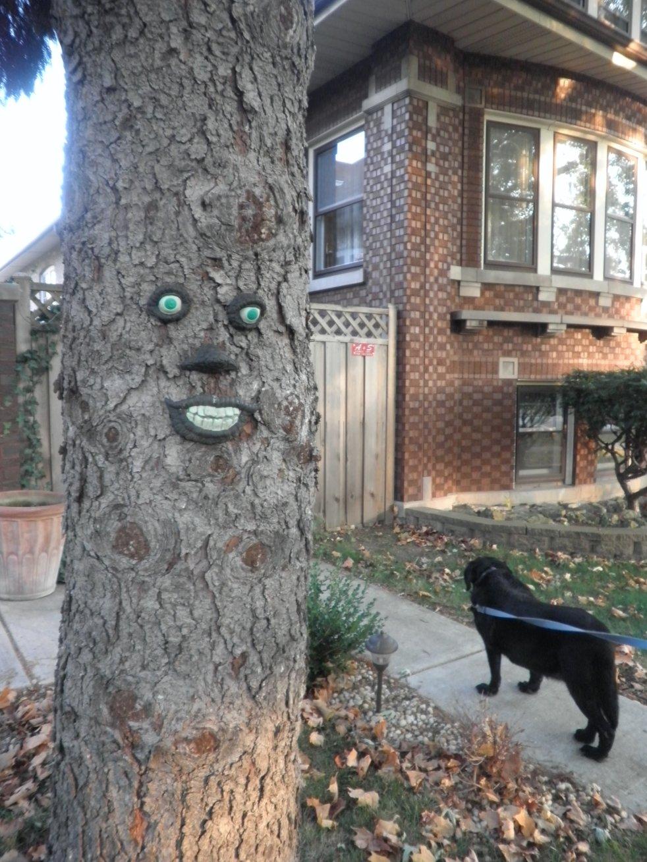 Halloween Decorazioni E Addobbi Delle Case Americane