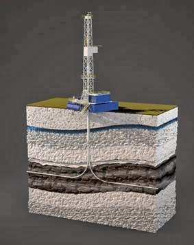 carbonaceous shale thesis