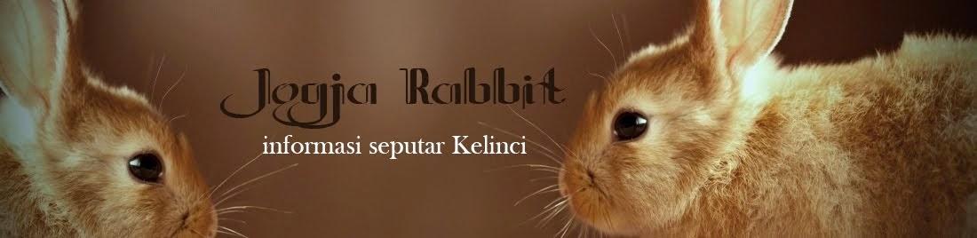 Jogja Rabbit