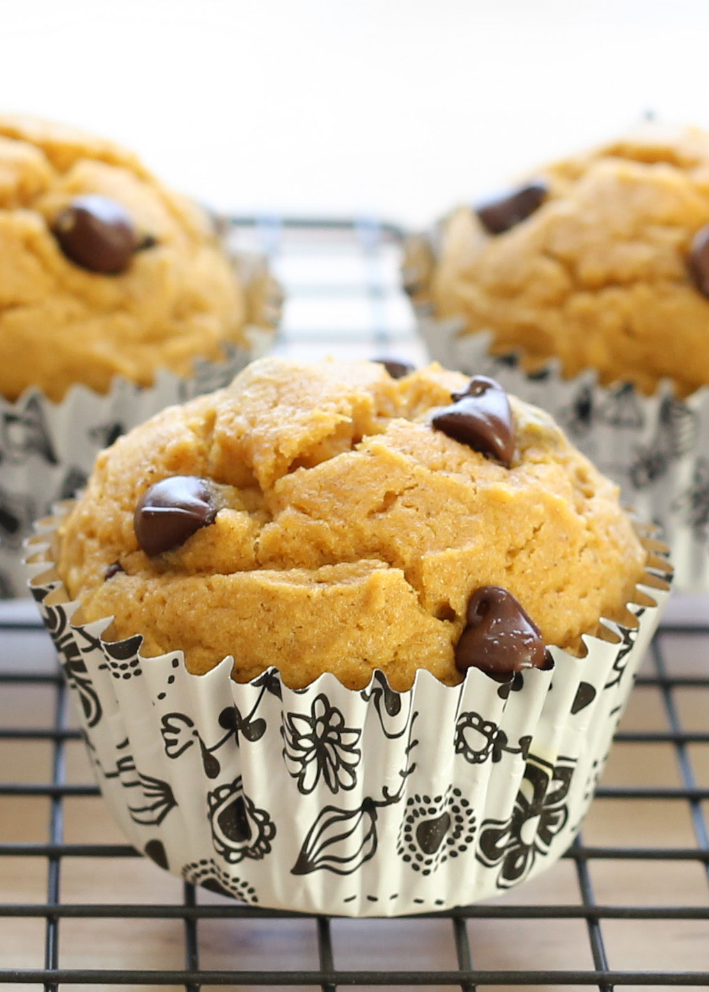 Chocolate Chip Pumpkin Muffins {traditional and gluten free recipes} by Barefeet In The Kitchen